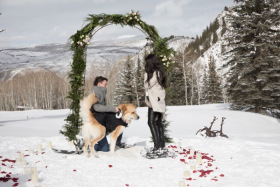 Snow Shoe Proposal Starring the Couple's  Dog , Beaver Creek