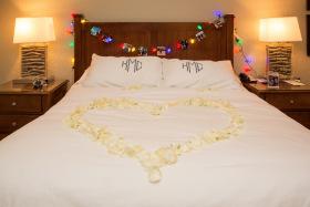 Beaver Creek Christmas Themed Proposal